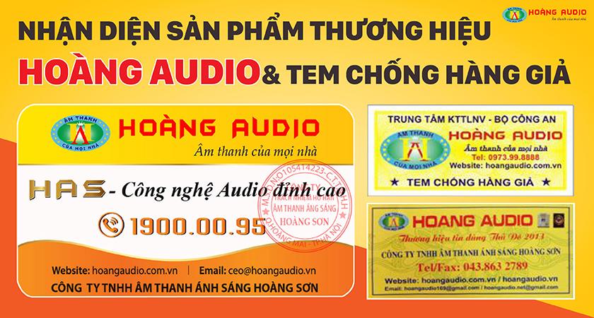 nhan-dien-tem-hoang-audio