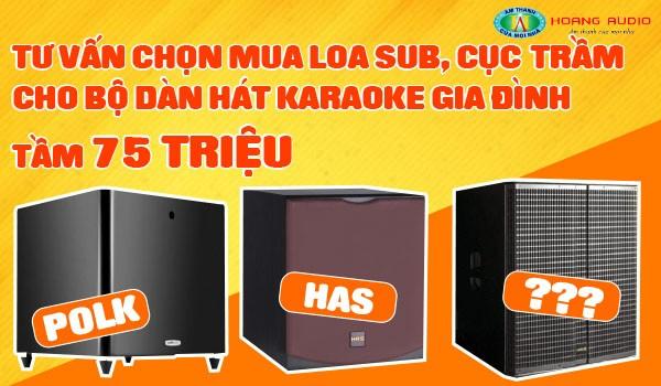 Tư vấn chọn mua loa Sub, cục trầm cho bộ dàn hát karaoke gia đình tầm 75 triệu